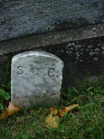 CAREY, S. C. - Ogle County, Illinois | S. C. CAREY - Illinois Gravestone Photos