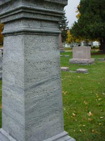 CAREY, ISABELLE - Ogle County, Illinois | ISABELLE CAREY - Illinois Gravestone Photos