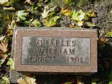 CARPENTER, CHARLES - Ogle County, Illinois | CHARLES CARPENTER - Illinois Gravestone Photos