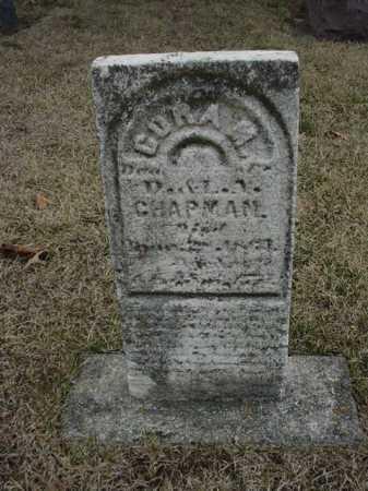 CHAPMAN, CORA - Ogle County, Illinois   CORA CHAPMAN - Illinois Gravestone Photos