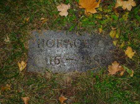 COON, HORACE - Ogle County, Illinois | HORACE COON - Illinois Gravestone Photos