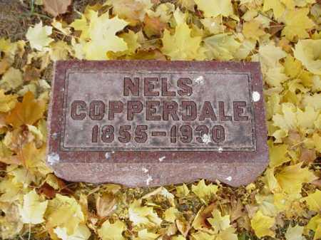 COPPERDALE, NELS - Ogle County, Illinois | NELS COPPERDALE - Illinois Gravestone Photos