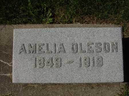 OLESON COUNTRYMAN, AMELIA - Ogle County, Illinois | AMELIA OLESON COUNTRYMAN - Illinois Gravestone Photos