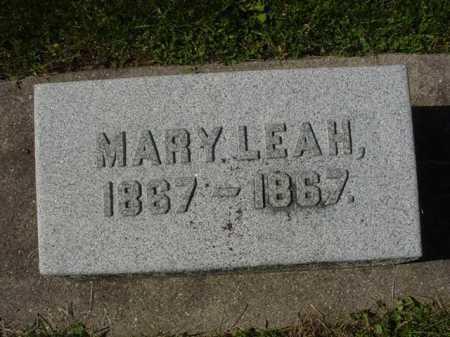 COUNTRYMAN, MARY LEAH - Ogle County, Illinois | MARY LEAH COUNTRYMAN - Illinois Gravestone Photos