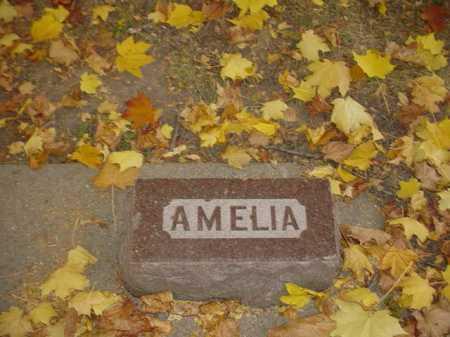 CRANDALL, AMELIA - Ogle County, Illinois   AMELIA CRANDALL - Illinois Gravestone Photos