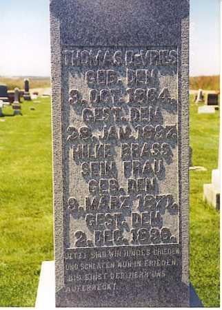 DEVRIES, THOMAS THOMSSEN - Ogle County, Illinois | THOMAS THOMSSEN DEVRIES - Illinois Gravestone Photos