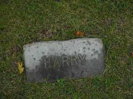 WAY, HARRY - Ogle County, Illinois | HARRY WAY - Illinois Gravestone Photos