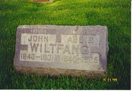 WILTFANG, ABBIE - Ogle County, Illinois | ABBIE WILTFANG - Illinois Gravestone Photos