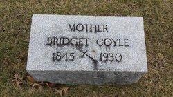 COYLE, BRIDGET - Peoria County, Illinois   BRIDGET COYLE - Illinois Gravestone Photos
