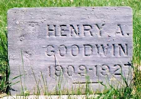 GOODWIN, HENRY ALBERT - Peoria County, Illinois | HENRY ALBERT GOODWIN - Illinois Gravestone Photos