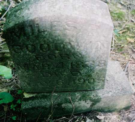 GOODWIN, MILES R. - Peoria County, Illinois | MILES R. GOODWIN - Illinois Gravestone Photos
