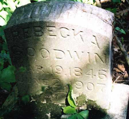 GOODWIN, REBECKA - Peoria County, Illinois | REBECKA GOODWIN - Illinois Gravestone Photos