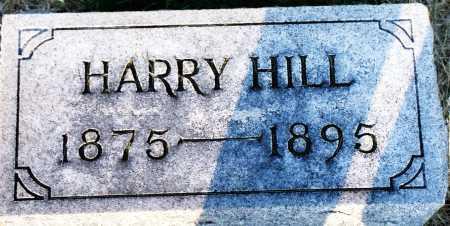 HILL, HARRY - Peoria County, Illinois | HARRY HILL - Illinois Gravestone Photos