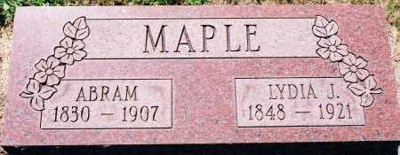 MAPLE, LYDIA JANE BATTON - Peoria County, Illinois | LYDIA JANE BATTON MAPLE - Illinois Gravestone Photos