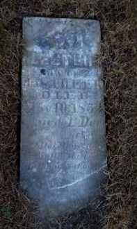 CHEEK, LESTER - Pike County, Illinois   LESTER CHEEK - Illinois Gravestone Photos