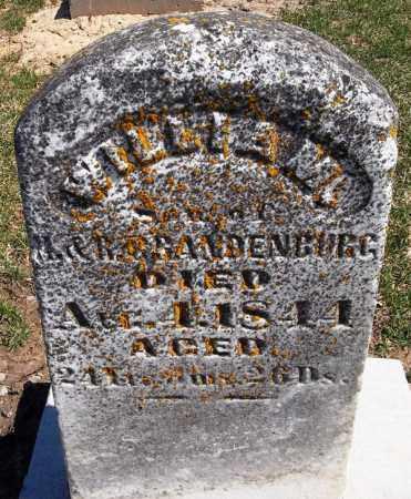 BRANDENBURG, WILLIE M. - Rock Island County, Illinois | WILLIE M. BRANDENBURG - Illinois Gravestone Photos