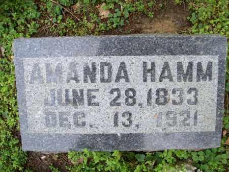 HAMM, AMANDA - Schuyler County, Illinois | AMANDA HAMM - Illinois Gravestone Photos