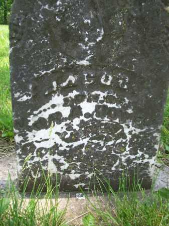 HOWELL, JACOB - Schuyler County, Illinois | JACOB HOWELL - Illinois Gravestone Photos