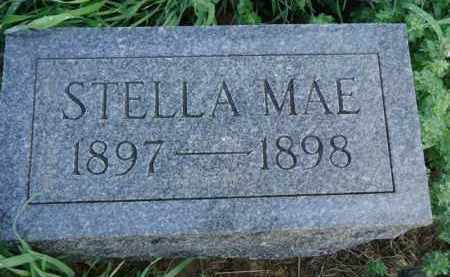 NORTHCUTT, STELLA MAE - Scott County, Illinois | STELLA MAE NORTHCUTT - Illinois Gravestone Photos