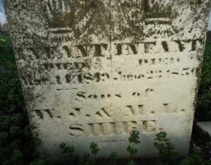 SHIBE, INFANT - Scott County, Illinois | INFANT SHIBE - Illinois Gravestone Photos