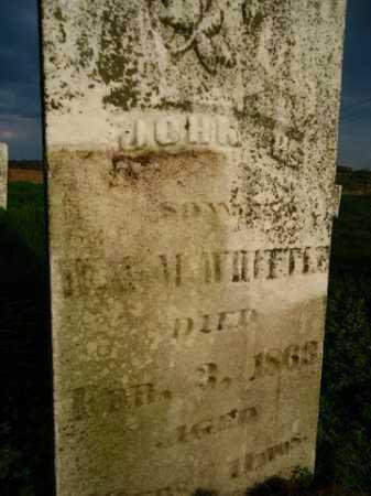 WHITTLE, JOHN H. - Scott County, Illinois | JOHN H. WHITTLE - Illinois Gravestone Photos