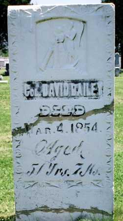 BAILEY, DAVID - Tazewell County, Illinois | DAVID BAILEY - Illinois Gravestone Photos