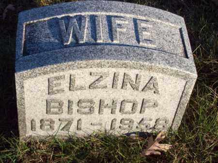 BISHOP, ELZINA - Tazewell County, Illinois | ELZINA BISHOP - Illinois Gravestone Photos