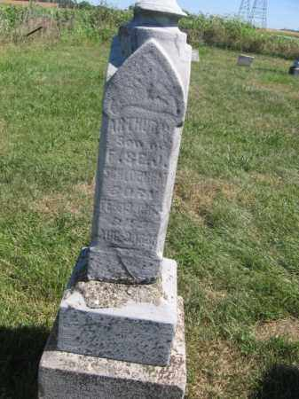BISHOP, ARTHUR - Tazewell County, Illinois | ARTHUR BISHOP - Illinois Gravestone Photos