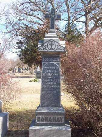 DANAHAY, DENNIS - Tazewell County, Illinois   DENNIS DANAHAY - Illinois Gravestone Photos