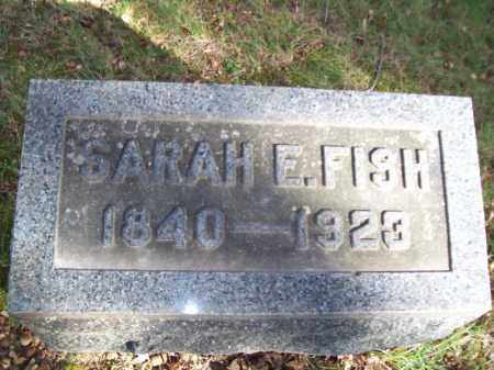 FISH, SARAH E - Tazewell County, Illinois | SARAH E FISH - Illinois Gravestone Photos