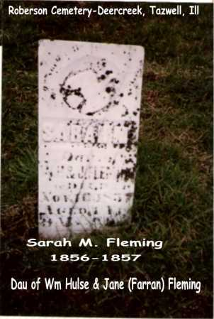 FLEMING, SARAH M. - Tazewell County, Illinois | SARAH M. FLEMING - Illinois Gravestone Photos