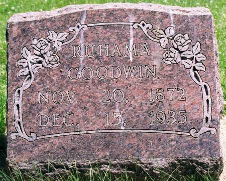 GOODWIN GOODWIN, RUHAMA - Tazewell County, Illinois | RUHAMA GOODWIN GOODWIN - Illinois Gravestone Photos