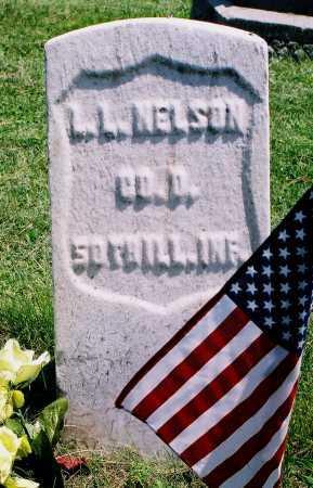 NELSON, LEVI L. - Tazewell County, Illinois | LEVI L. NELSON - Illinois Gravestone Photos