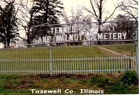 TENNESSEE POINT, CEMETERY - Tazewell County, Illinois | CEMETERY TENNESSEE POINT - Illinois Gravestone Photos