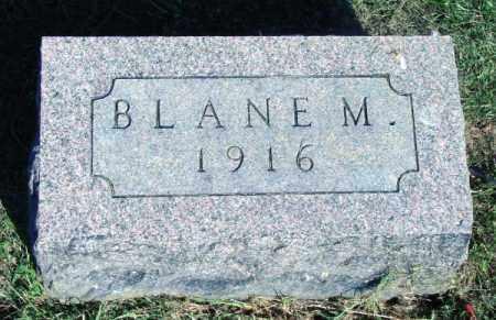 MCRILL, BLANE M - Wayne County, Illinois | BLANE M MCRILL - Illinois Gravestone Photos
