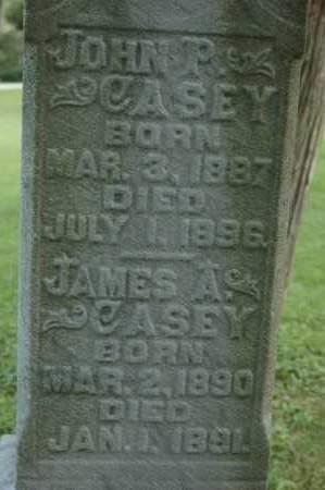 CASEY, JAMES A. - Whiteside County, Illinois | JAMES A. CASEY - Illinois Gravestone Photos