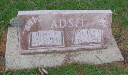 ADSIT, HIRAM B. - Will County, Illinois | HIRAM B. ADSIT - Illinois Gravestone Photos