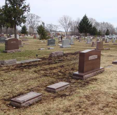 ALDERMAN, AUGUSTUS S. - Will County, Illinois | AUGUSTUS S. ALDERMAN - Illinois Gravestone Photos