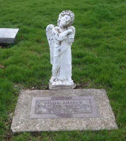 AMADOR, JAVIER - Will County, Illinois | JAVIER AMADOR - Illinois Gravestone Photos