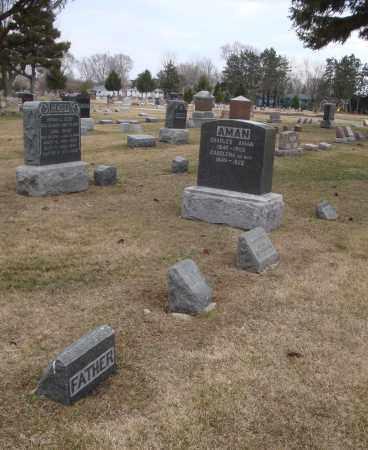 AMAN, CHARLES - Will County, Illinois | CHARLES AMAN - Illinois Gravestone Photos