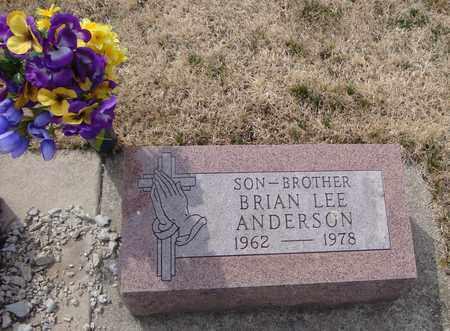 ANDERSON, BRIAN LEE - Will County, Illinois | BRIAN LEE ANDERSON - Illinois Gravestone Photos