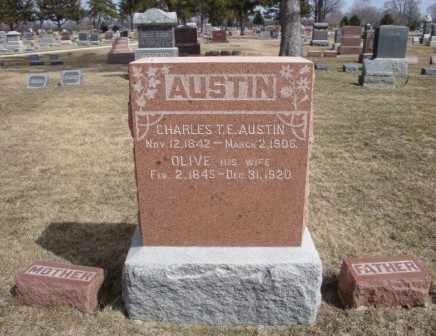 AUSTIN, CHARLES T. E. - Will County, Illinois   CHARLES T. E. AUSTIN - Illinois Gravestone Photos