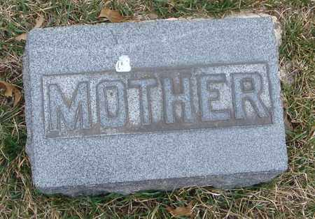 AUSTIN, MOTHER - Will County, Illinois   MOTHER AUSTIN - Illinois Gravestone Photos