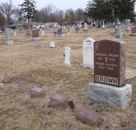 BROWN, GEORGE J. - Will County, Illinois | GEORGE J. BROWN - Illinois Gravestone Photos