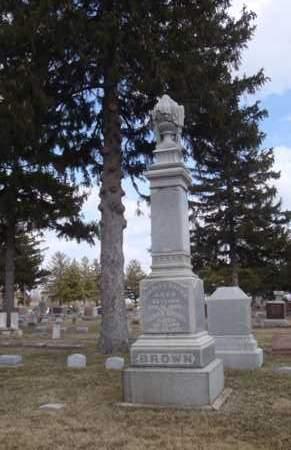 BROWN, SARAH - Will County, Illinois | SARAH BROWN - Illinois Gravestone Photos