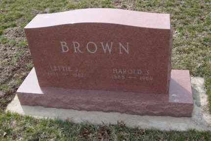 BROWN, LETTIE J. - Will County, Illinois | LETTIE J. BROWN - Illinois Gravestone Photos