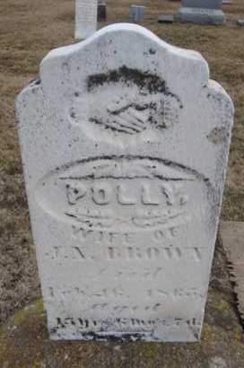 BROWN, POLLY - Will County, Illinois | POLLY BROWN - Illinois Gravestone Photos