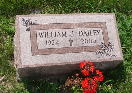 DAILEY, WILLIAM J. - Will County, Illinois | WILLIAM J. DAILEY - Illinois Gravestone Photos