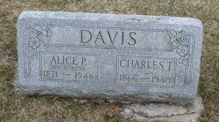 DAVIS, CHARLES T. - Will County, Illinois | CHARLES T. DAVIS - Illinois Gravestone Photos