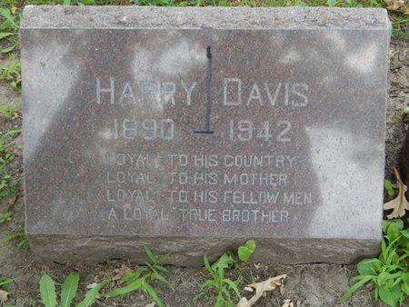 DAVIS, HARRY - Will County, Illinois   HARRY DAVIS - Illinois Gravestone Photos